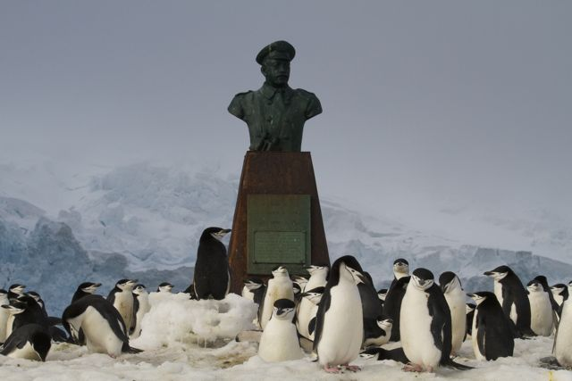 Bust of Captain Luis Pardo who rescued Ernest Shackleton's men on Point Wilde, Elephant Island